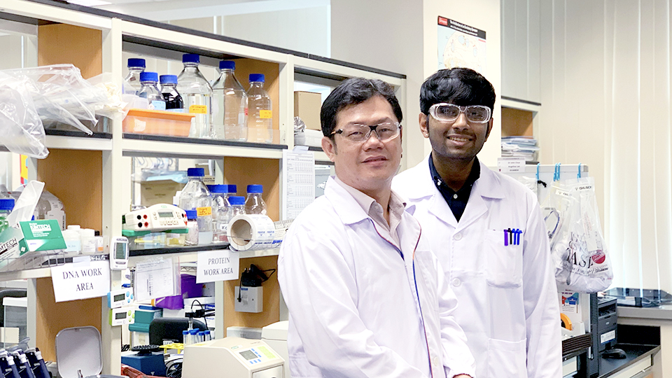 NUS researchers identify new Alzheimer's biomarker